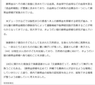 インターネット琉球新報 (2).png