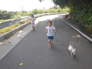 レオの散歩.JPG