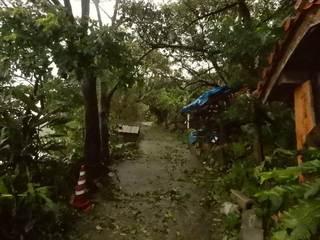 家の坂台風直後.JPG
