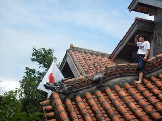 屋根の草刈り.JPG