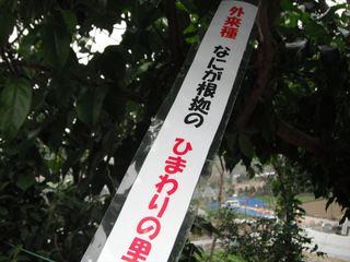 川柳6.JPG