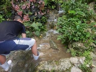 池掃除(砂利採り).JPG