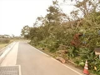 片付け後道路.JPG