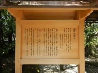 猿田彦神社 (2).JPG