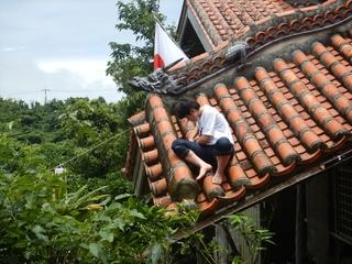 玄関屋根の草刈り.JPG
