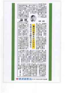 琉球新報論壇.jpg