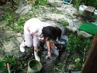 節水・雨水でゾウキン洗い.jpg