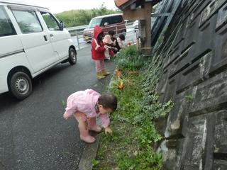 花壇草刈り.JPG