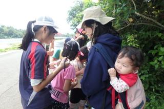 野草教室.JPG