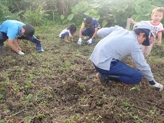 野菜の苗植え付け.JPG